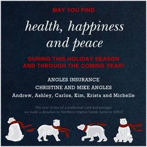 holiday_wishes_angles_insurance_2015
